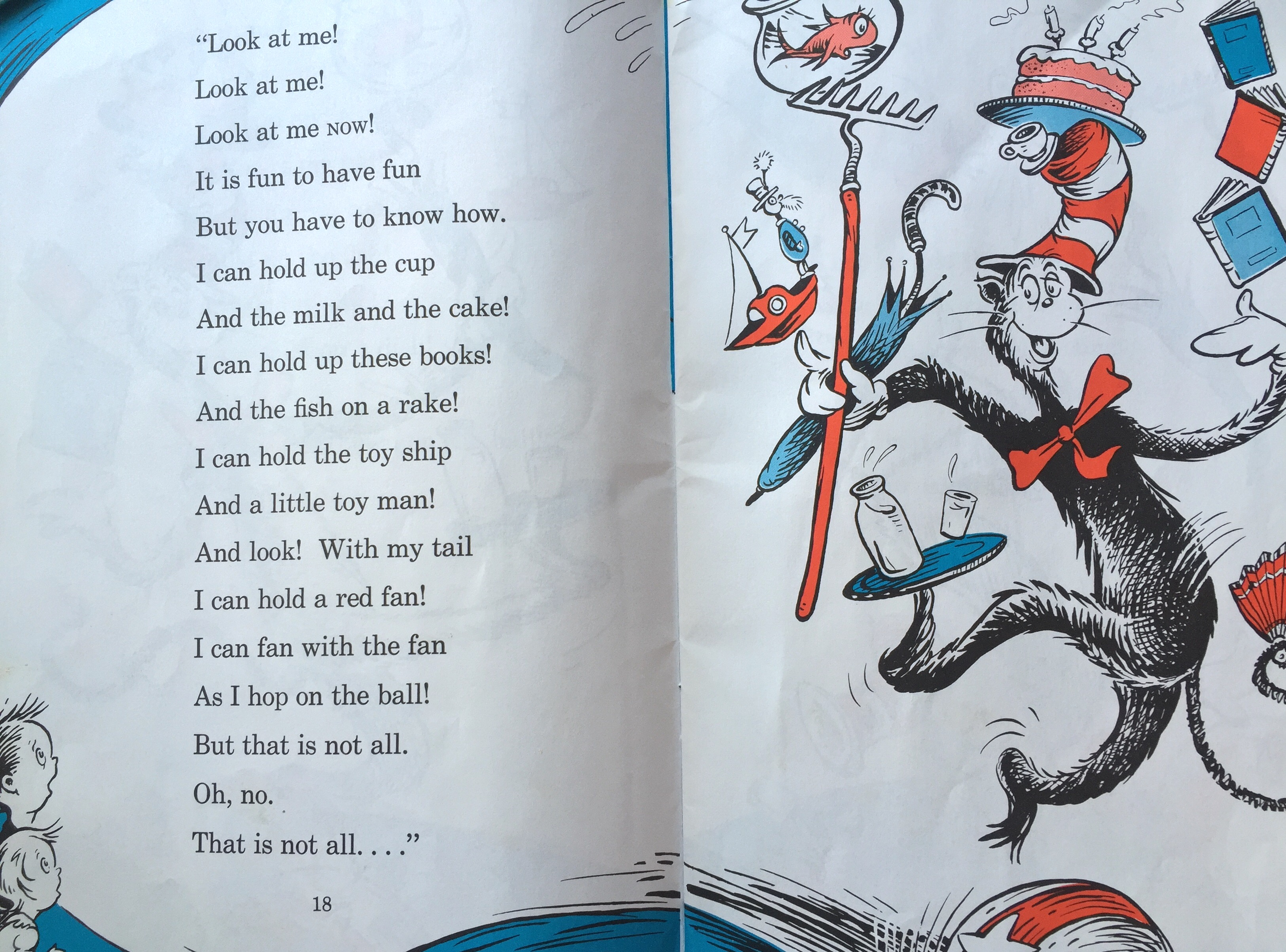 cat and the hat book